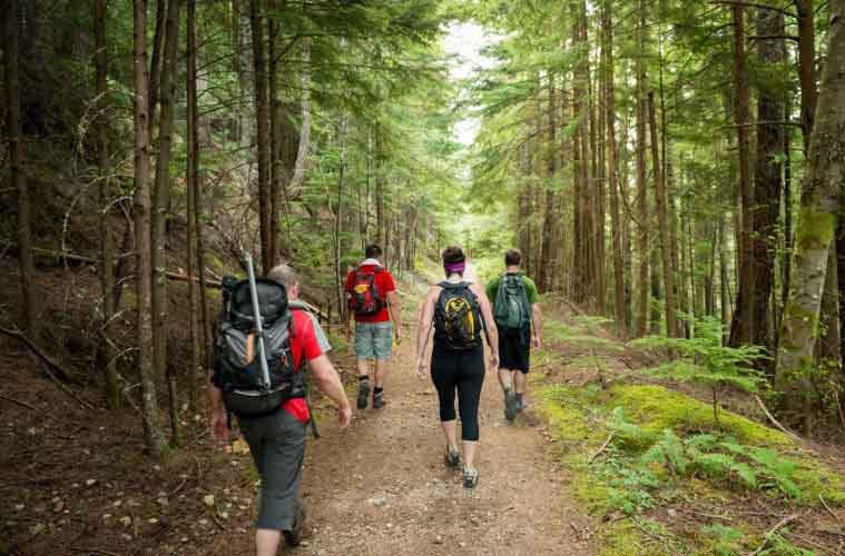 Особливості «лісової школи» в Полтавщині